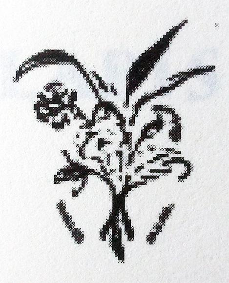 """Signet: Signet der Fima Stern & Co. Markennamen waren """"Erika"""", """"Kornblume"""" oder """"Rheingold""""."""